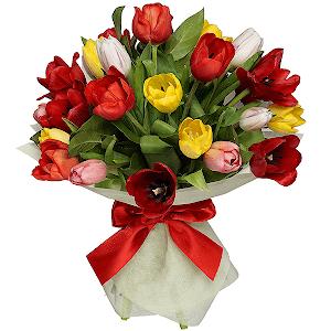 Тюльпаны (25 шт.) с доставкой в Ельце